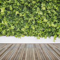 Holzdeck | Terrasse