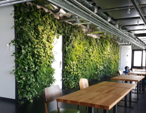 Vertikale Bepflanzung